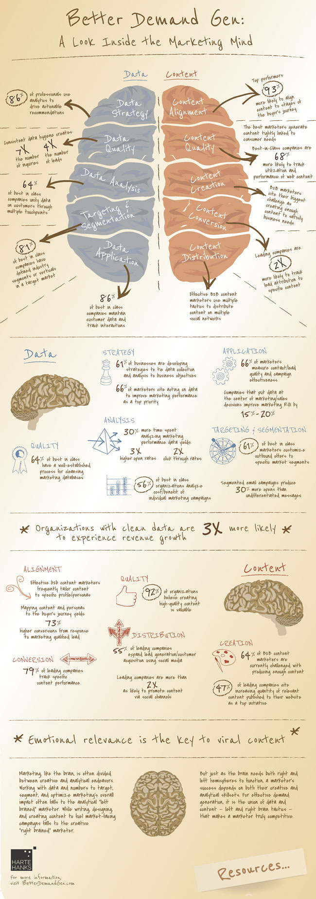 The Anatomy of an Effective Marketing Brain