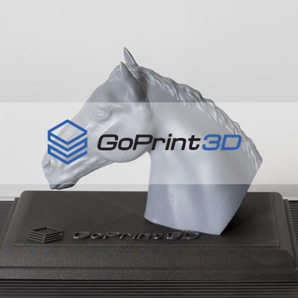 GoPrint3D client